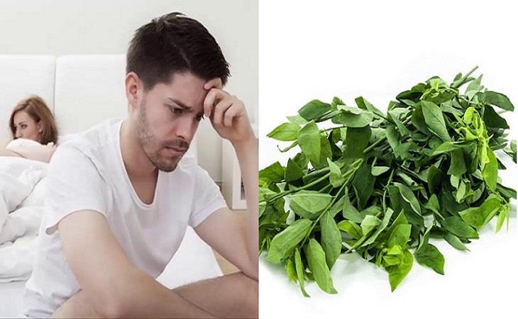 chữa yếu sinh lý bằng rau ngót