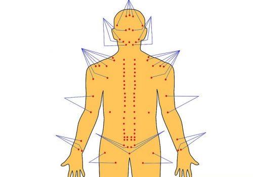 Cách xoa bóp bấm huyệt trị đau lưng