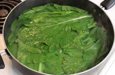 cách chữa bệnh gout bằng cải bẹ xanh
